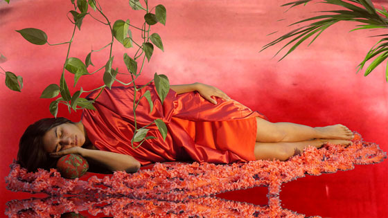 Sylbee Kim / The Red Liquid and Narcissus, 2017, Video still